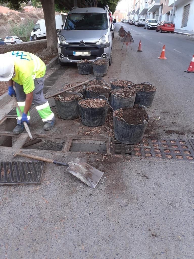 Trabajos de limpieza en Adra
